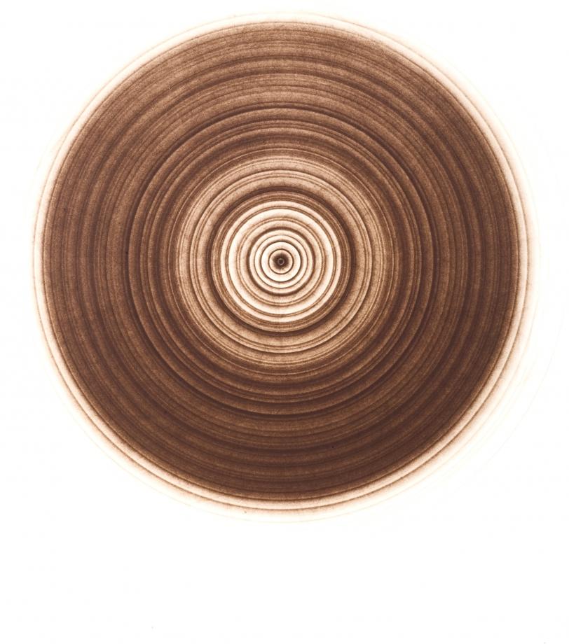Edward Mapplethorpe, Untitled No.897, 2007, Silbergelatine Lith-Druck, 50.8 x 40.6 cm